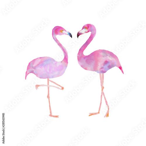Canvas Prints Flamingo フラミンゴ