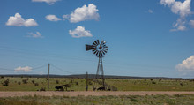 Windmill In An American Countryside Landscape. Cows In A Pasture, Sunny Spring Day, Blue Sky With Clouds.