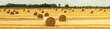 canvas print picture - Strohballen auf dem Feld