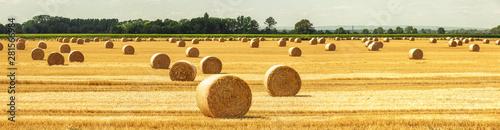 Strohballen auf dem Feld Fototapet