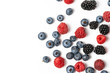 canvas print picture - Macro view of different mix with ripe fruits
