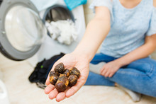 Woman Using Soap Nuts To Washing Laundry