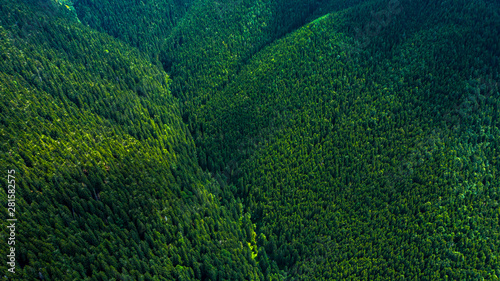 Foto op Canvas Noord Europa Aerial view of mountains covered with coniferous forests