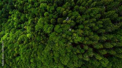 Foto auf Gartenposter Nordlicht Aerial view of mountains covered with coniferous forests