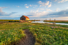 Summer At The Old Harbour In T...