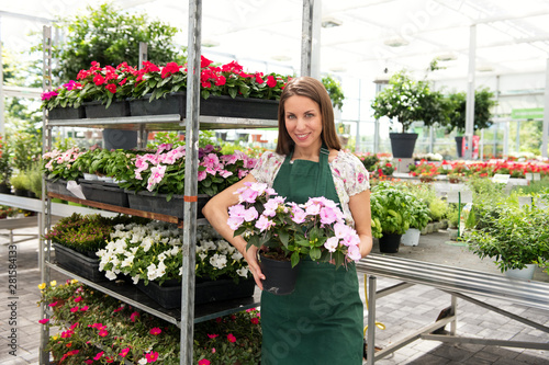 Canvastavla Nursery owner showing a flowering potted impatiens