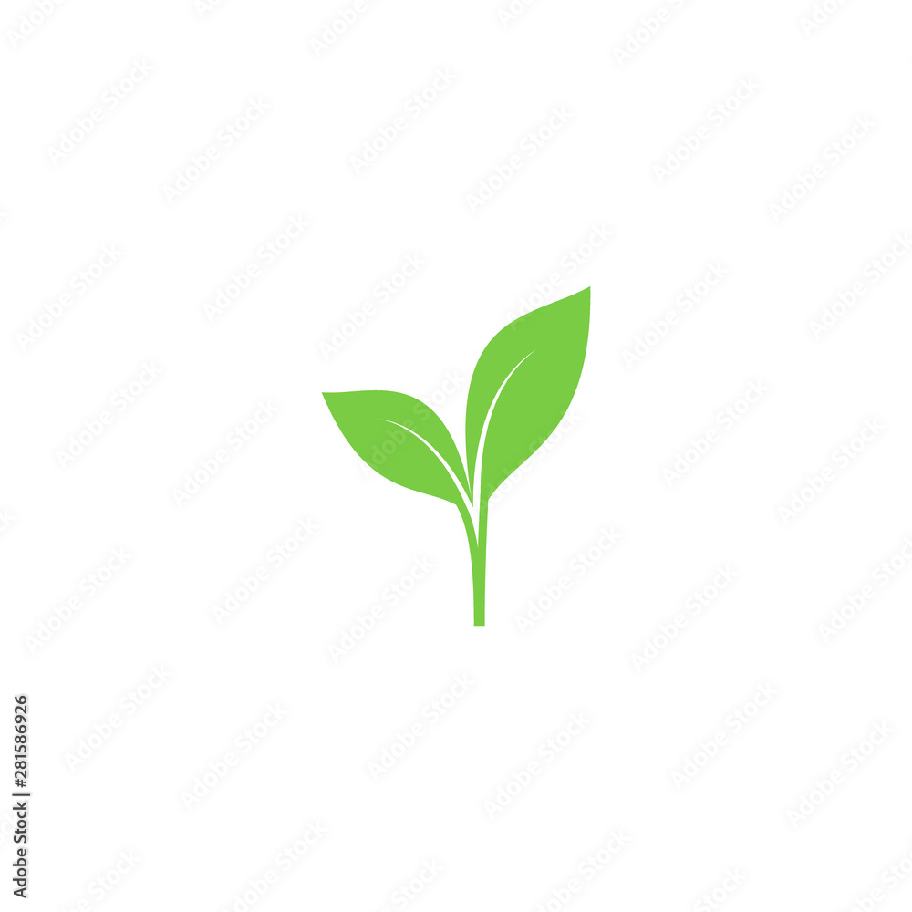 Fototapety, obrazy: Young sprout green vector icon. Sprout with leaves simple plant symbol.