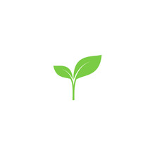 Young Sprout Green Vector Icon. Sprout With Leaves Simple Plant Symbol.