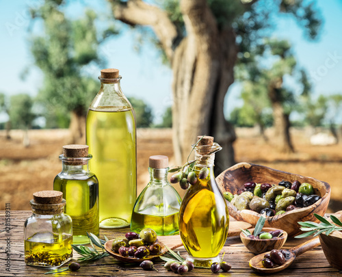 Fototapeta Olive oil and berries are on the wooden table under the olive tree. obraz