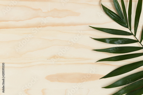 Palm leaf on a wooden table. Flat lay with blank copy space.