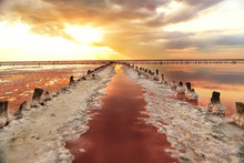 Unique Salt Lake With Pink Water And Salt At Sunset. Rows Of Wooden Columns Covered With Salt Crystals.