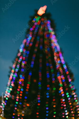 Christmas tree #281599775