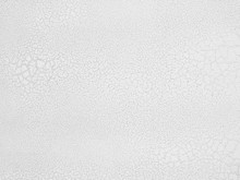 White Crack Texture