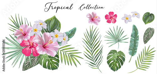Photo hand drawn Set of tropical leaves and flowers