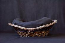 Background For Shooting Newborns. Wooden Basket On A Dark Background. Close-up.