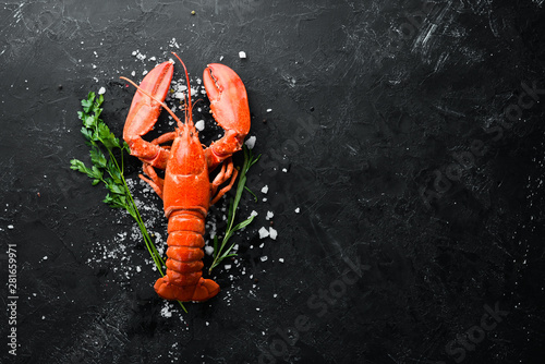 Fotografie, Obraz Lobster with spices on a dark background
