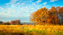 Autumn Nature. October Landsca...