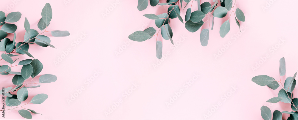 Fototapeta Eucalyptus leaves and branches on pastel pink background. Eucalyptus branches pattern. Flat lay, top view, copy space, banner