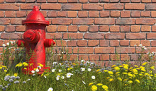 An Old Red Fire Hydrant Stands In The Grass With Wildflowers Opposite A Brick Wall. Front View. Illustration With Copy Space. 3D Render.