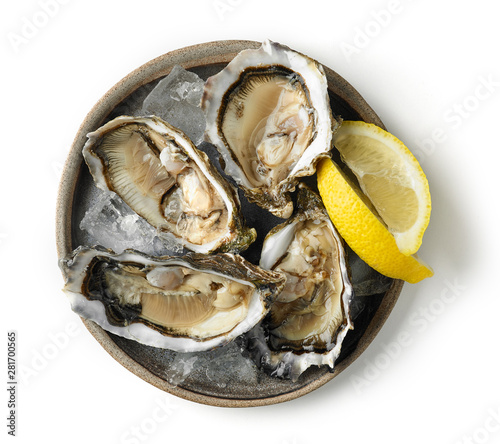 plate of fresh oysters on white background Billede på lærred