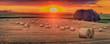 canvas print picture - Landschaft im Sommer, Sonnenuntergang, abgeerntete Getreidefeld mit Strohballen, Panorama