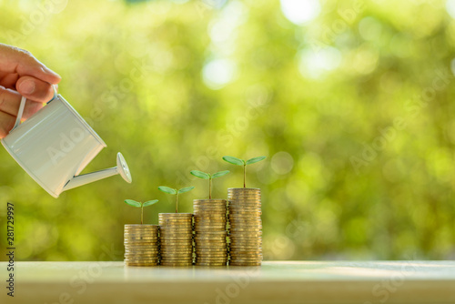 Fotografía  Fund investment / portfolio management for long term sustainable growth concept : Investor pours water from watering can, sprout on rows of rising coins, depicts money gain from financial investment
