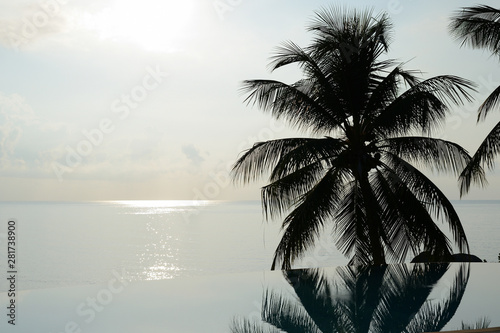 Foto auf AluDibond Palms Morning view of the ocean and coconut palm tree reflected in the pool. Tropical background