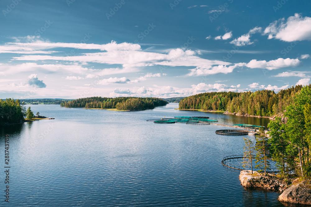 Fototapeta Fisheries, Fish Farm In Summer Lake Or River In Beautiful Summer Sunny Day. Swedish Nature, Sweden
