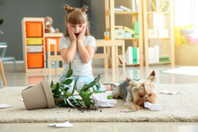 Little Girl And Her Dog Near Dropped Houseplant And Paper Pieces On Carpet