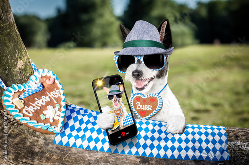Photo sur Aluminium Chien de Crazy bavarian beer dog