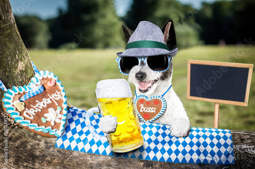 Tuinposter Crazy dog bavarian beer dog