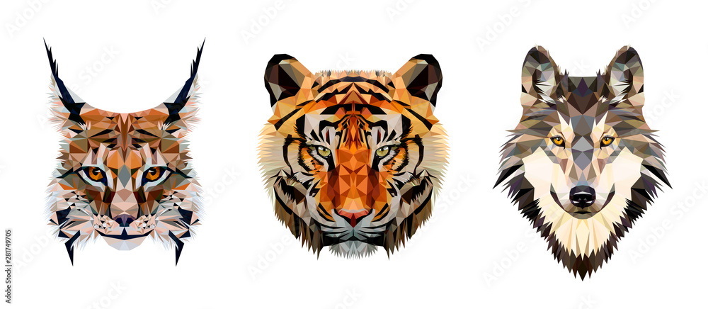 Fototapeta Low poly triangular tiger, lynx and wolf heads on white background, vector illustration isolated.  Polygonal style trendy modern logo design. Suitable for printing on a t-shirt.