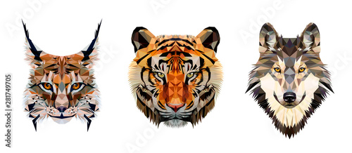 Low poly triangular tiger, lynx and wolf heads on white background, vector illustration isolated. Polygonal style trendy modern logo design. Suitable for printing on a t-shirt.