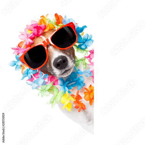 Tuinposter Crazy dog funny dog hawaiian lei and sunglasses