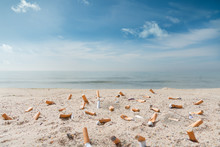 Pollution On The Beach Due To Cigarettes