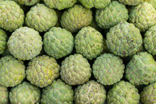 A Pile Of Green Sugar Apple