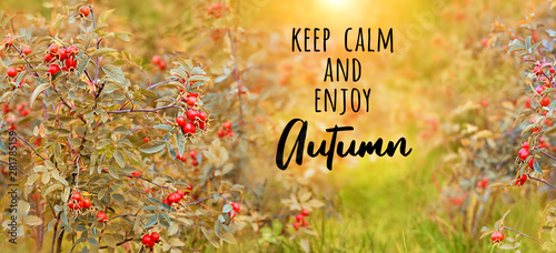 Photo  Keep calm and enjoy Autumn - text on autumn abstract defocused nature background