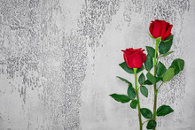 Red Roses On A Light Textured Background. Place For Text, Top View