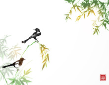 Bamboo Trees And Two Magpies Birds. Traditional Oriental Ink Painting Sumi-e, U-sin, Go-hua. Hieroglyph - Double Luck.