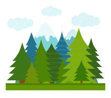 Cartoon Illustration For Children. Flat Summer Conifer Forest