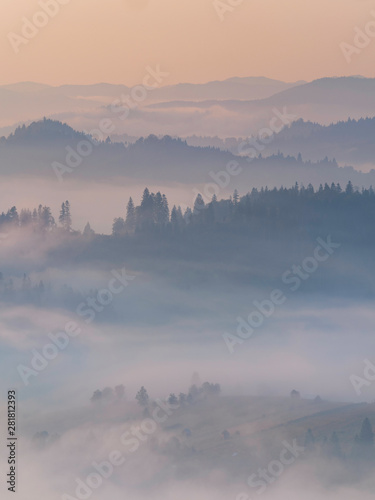 Poster Morning with fog Amazing foggy morning light