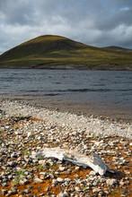 Low Water At Loch Glascarnoch ...