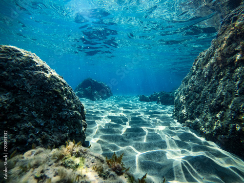 Obraz Underwater background with ocean water. At the bottom of the sea. - fototapety do salonu