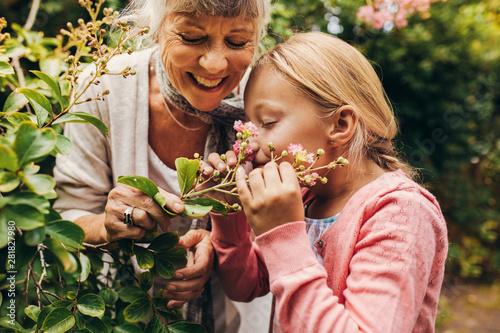 Kid enjoying nature - 281827980