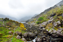 The River Loe And Narrow Mount...