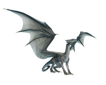 Dragon Looking Up