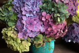 Bouquet of colored hydrangea in a vase, fragment, close-up.