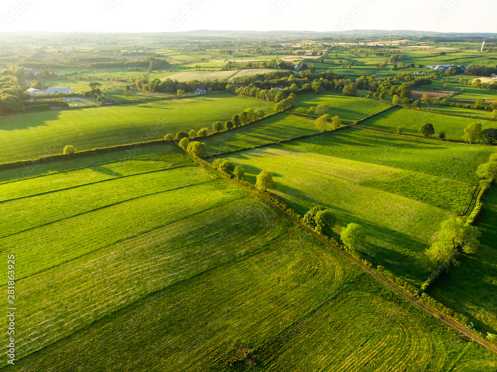 Fototapeta Aerial view of endless lush pastures and farmlands of Ireland. Beautiful Irish countryside with green fields and meadows. Rural landscape on sunset.