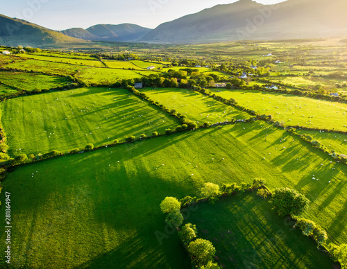 Aerial view of endless lush pastures and farmlands of Ireland. Beautiful Irish countryside with green fields and meadows. Rural landscape on sunset. Wall mural