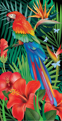 Fototapeta Egzotyczne Background with tropical jungle plants and parrot